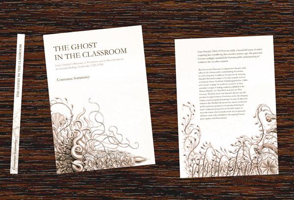 Buchcover Gestaltung & Konzeption